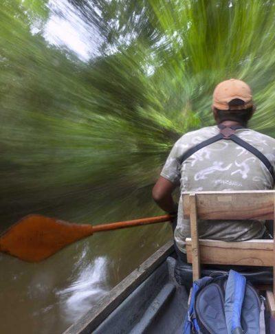 Amazon Trips