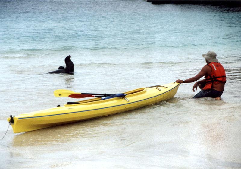 GPS08 Kayak Beach with Lion