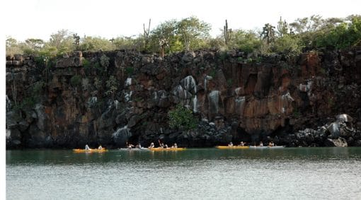 Kayaking in Santa Cruz (Galapagos Islands)