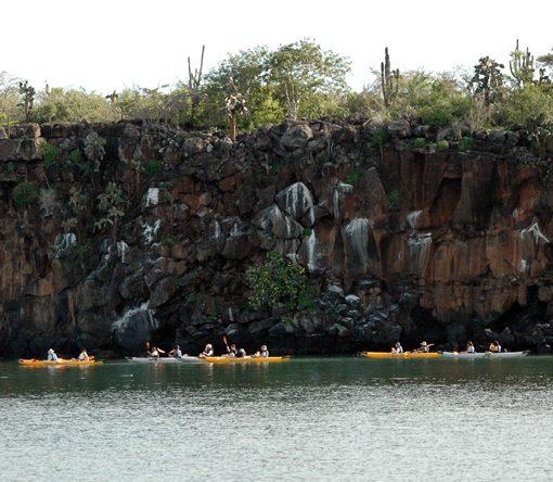 Kayaking in Santa Cruz (Galapagos Islands)