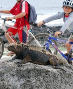 p-5898-gps97_mtb_with_kids_with_iguana.jpg