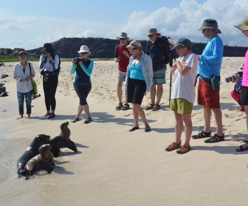 Angelito Galapagos cruise naturalist walk