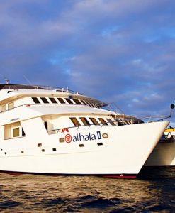 p-7848-athala_yacht_1.jpg