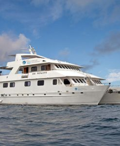 Seaman Journey Yacht