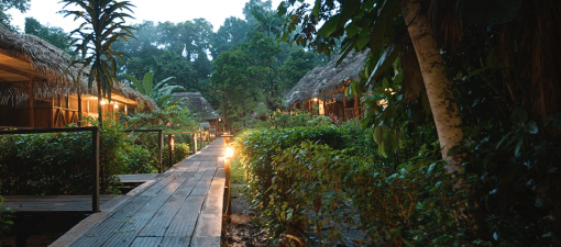 Sacha Lodge: Walkway Connecting the Cabins with the Main Lodge