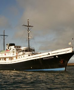 Galapagos Cruises and Yacht Trips
