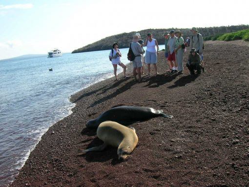 Guide interpreting for travelers in the Galapagos Islands