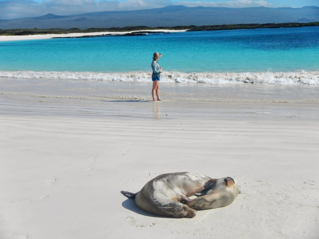 There is a good chance the sea will be this placid when you visit the Galapagos if you go November through April.
