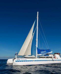 Nemo I Galapagos Sailing Catamaran