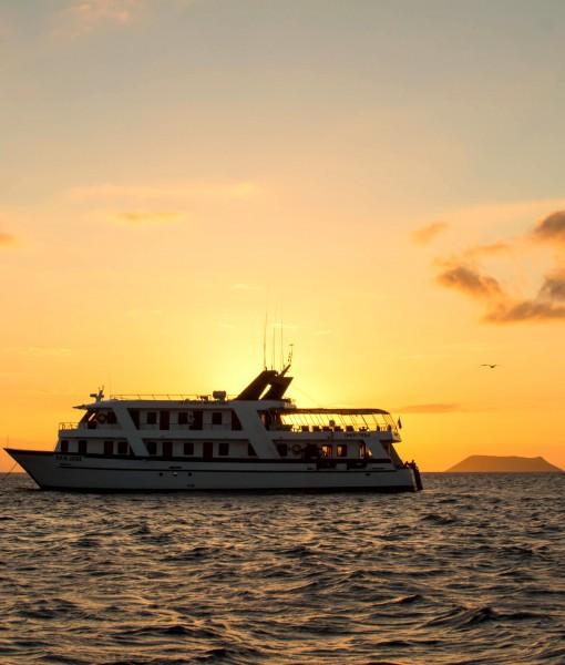 San Jose Galapagos Cruise  Detour