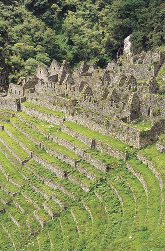 Wiñay Wayna Ruins on the Inca Trail