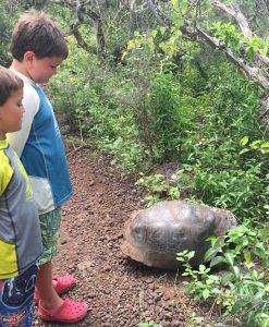 Kids and Galapagos Tortoise